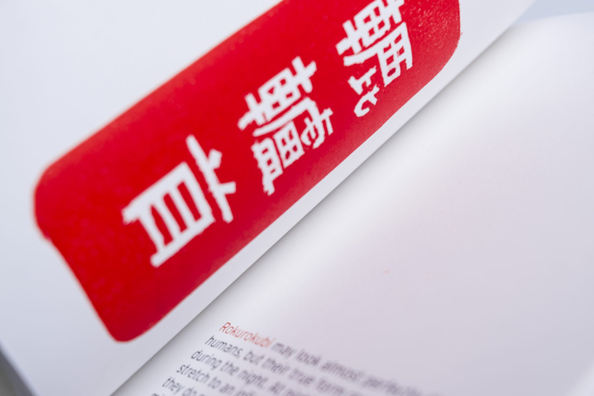 Design Project »Imagine Japan«, BookDesign, OktaySönmez